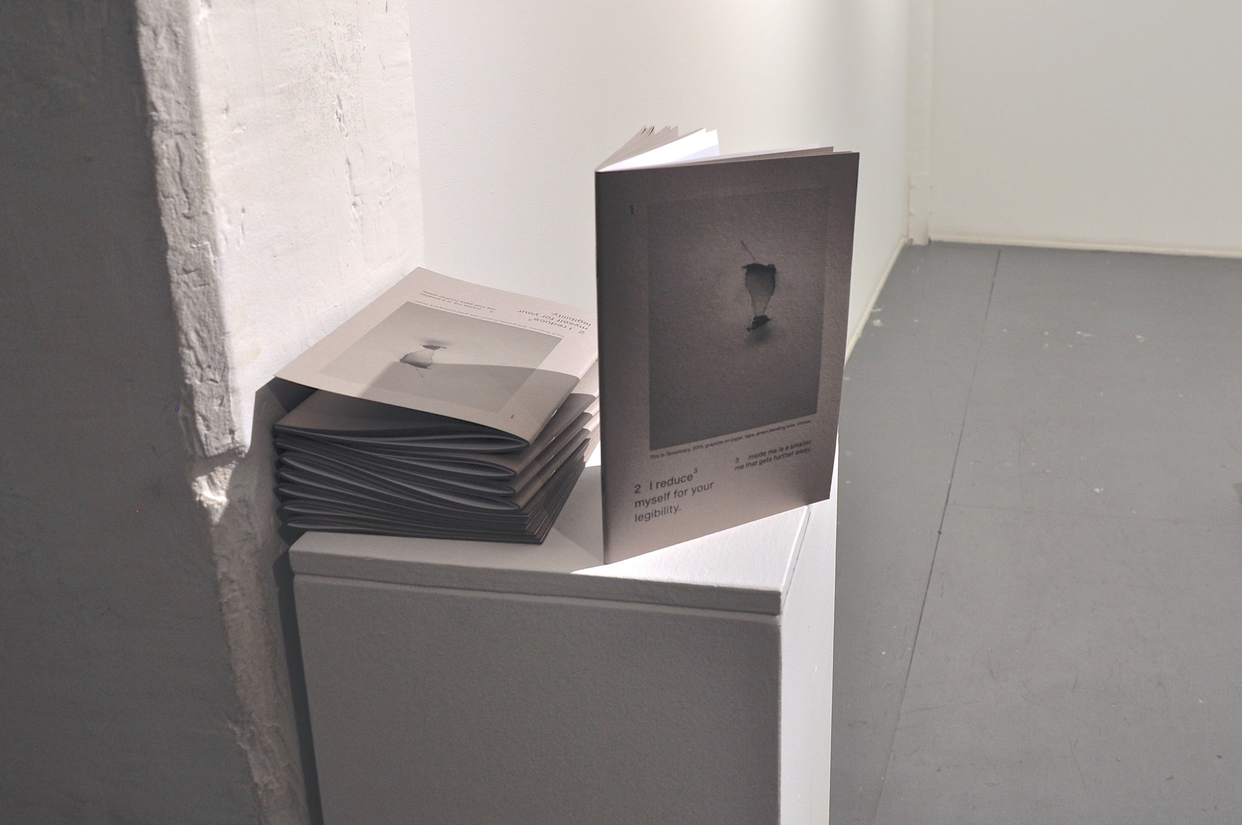 Extraction (installation view)book....jpg