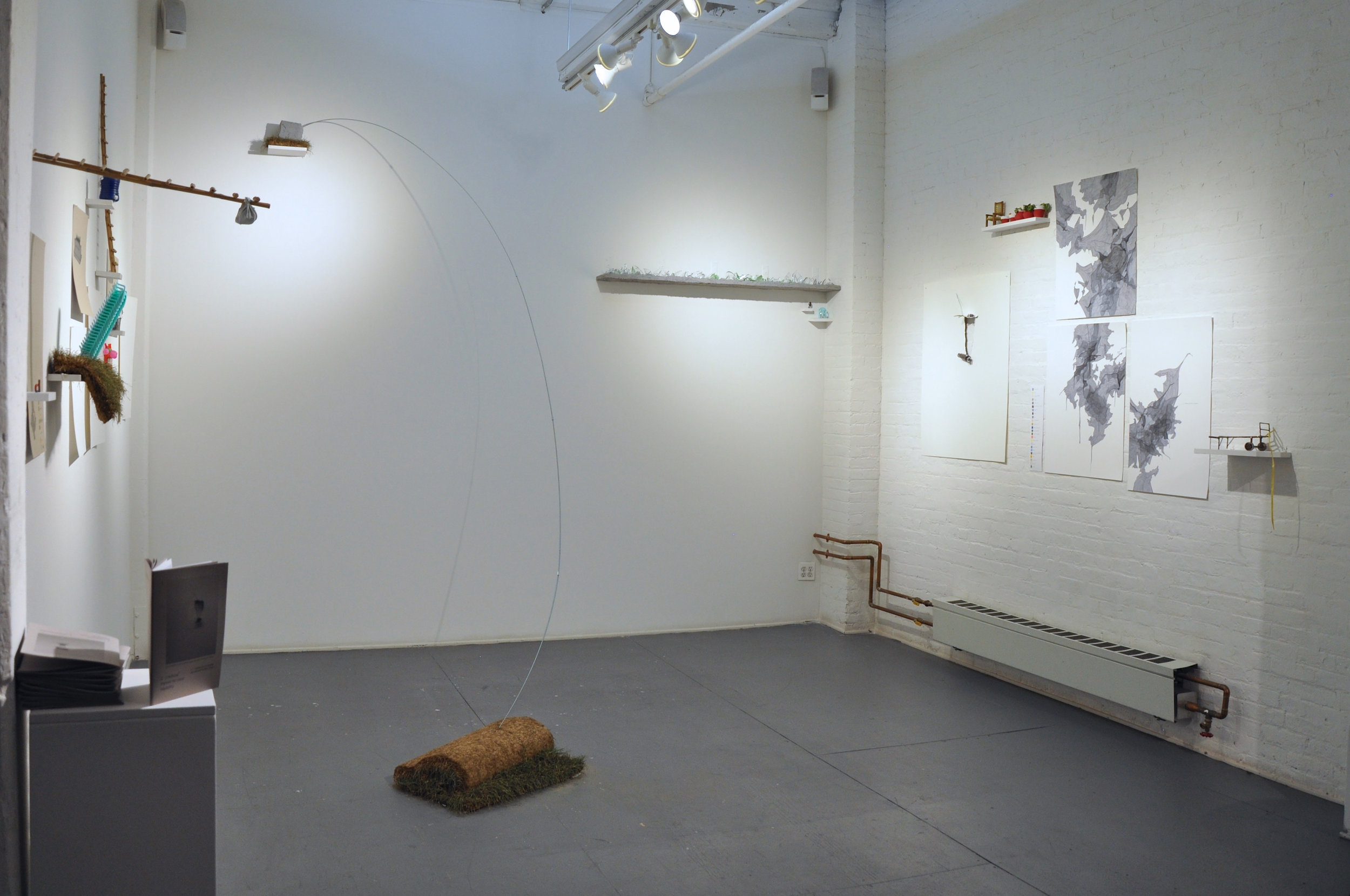 Extraction (installation view)show..jpg