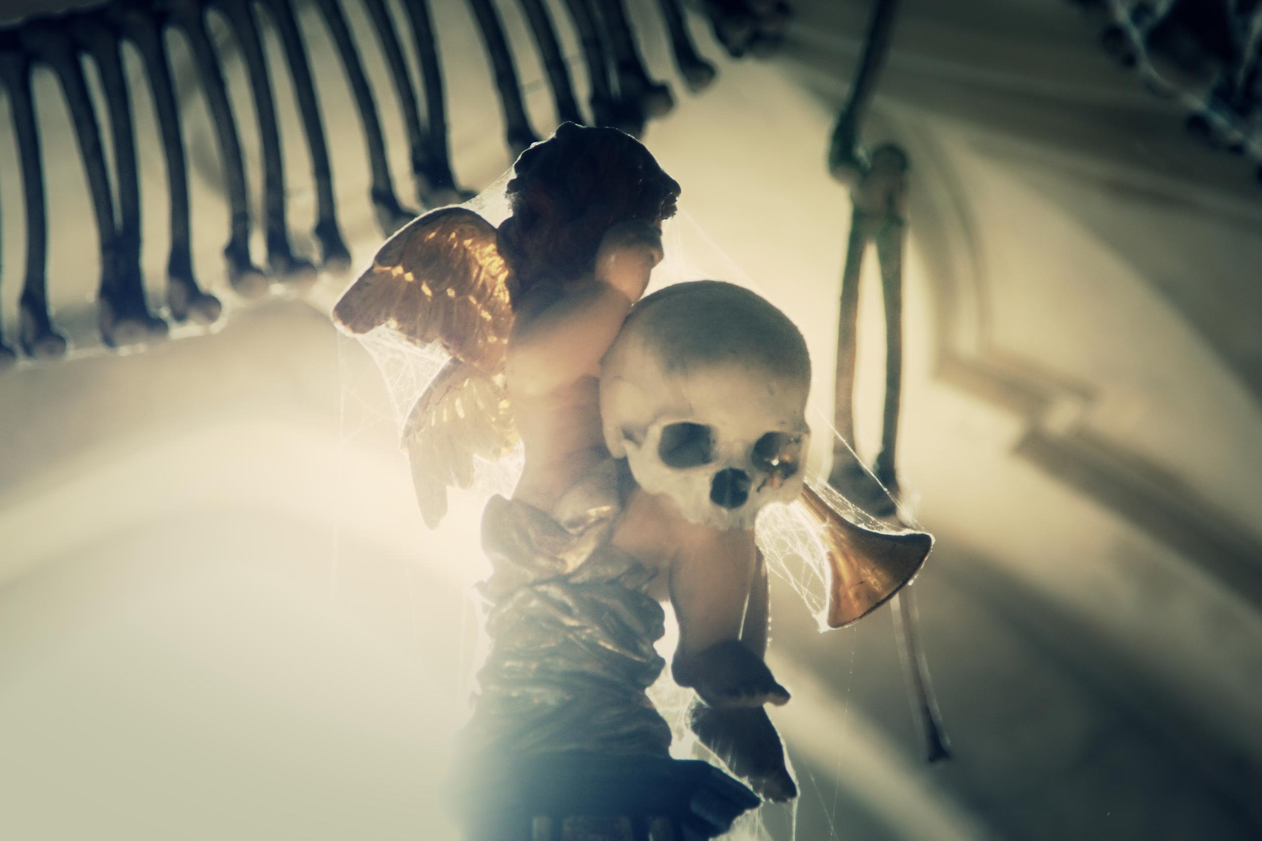 Ossuary Cherub