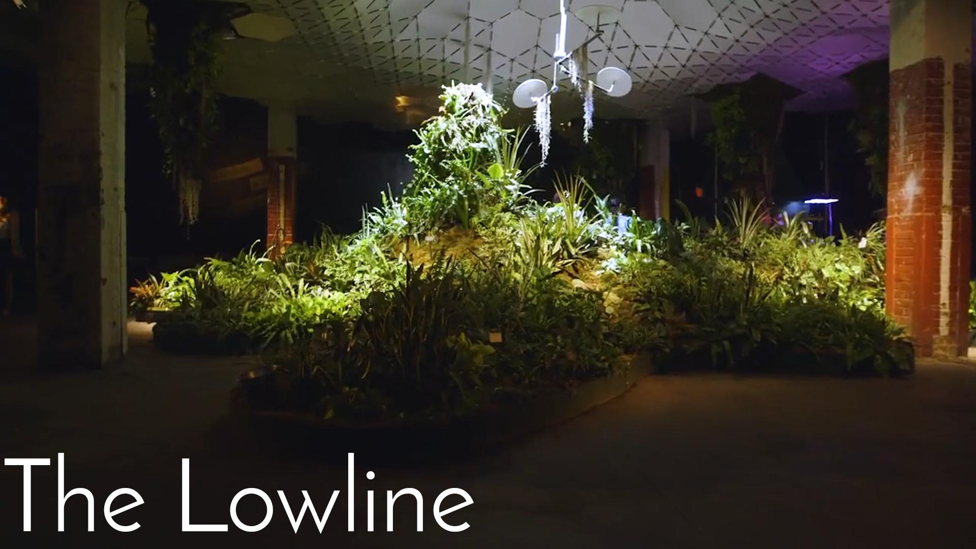 The Lowline
