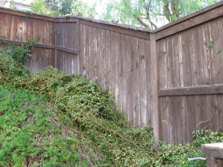 22. Fence Refinishing - South Pasadena, Ca 91030