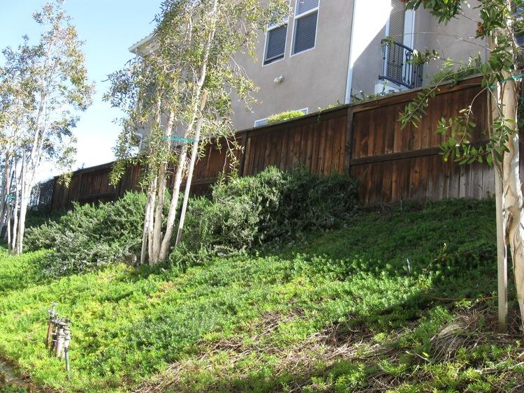 24. Refinish - Fence - BEFORE