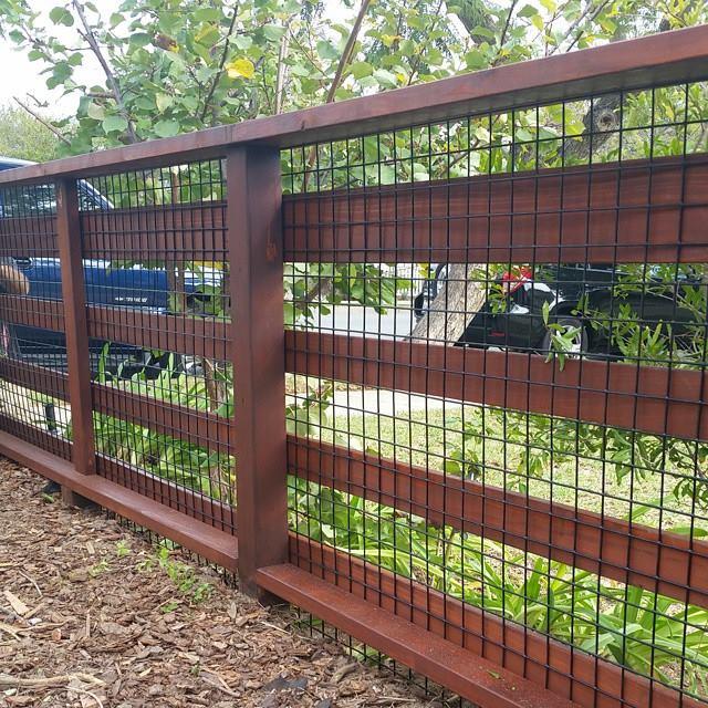 Vinyl Coated wire mesh fence.jpg
