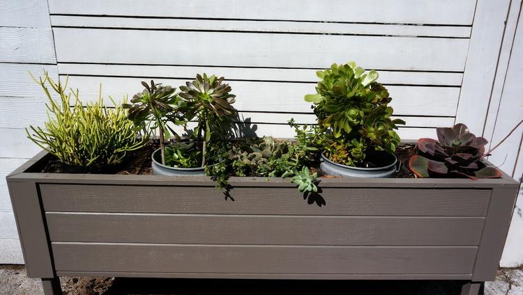 horizontal+planter+box.JPG