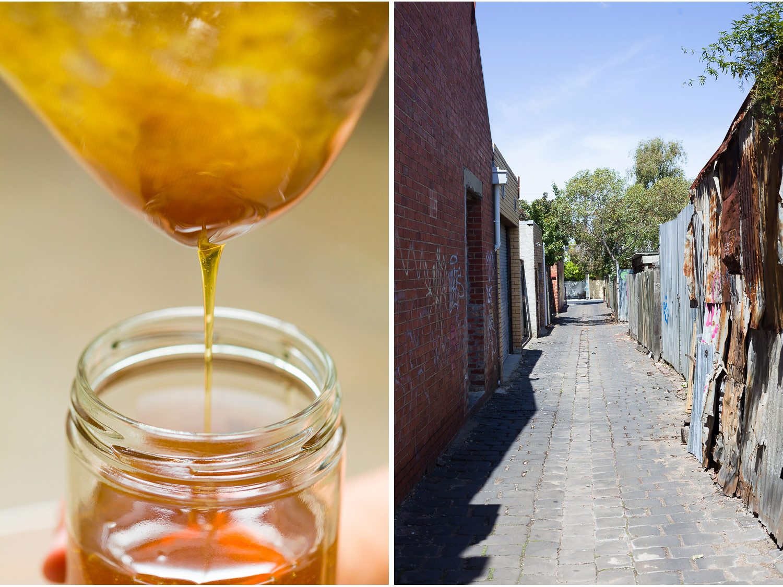 Beekeeper-2.jpg