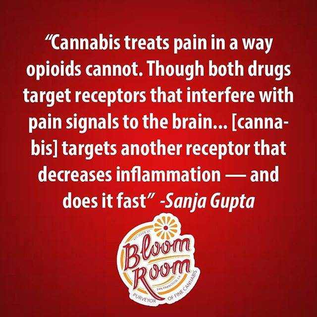 Tell us about your experience using cannabis for pain. #bloomlove #cannabiscommunity #sanfrancisco #puffpuffpass #weedstagram #cannabis