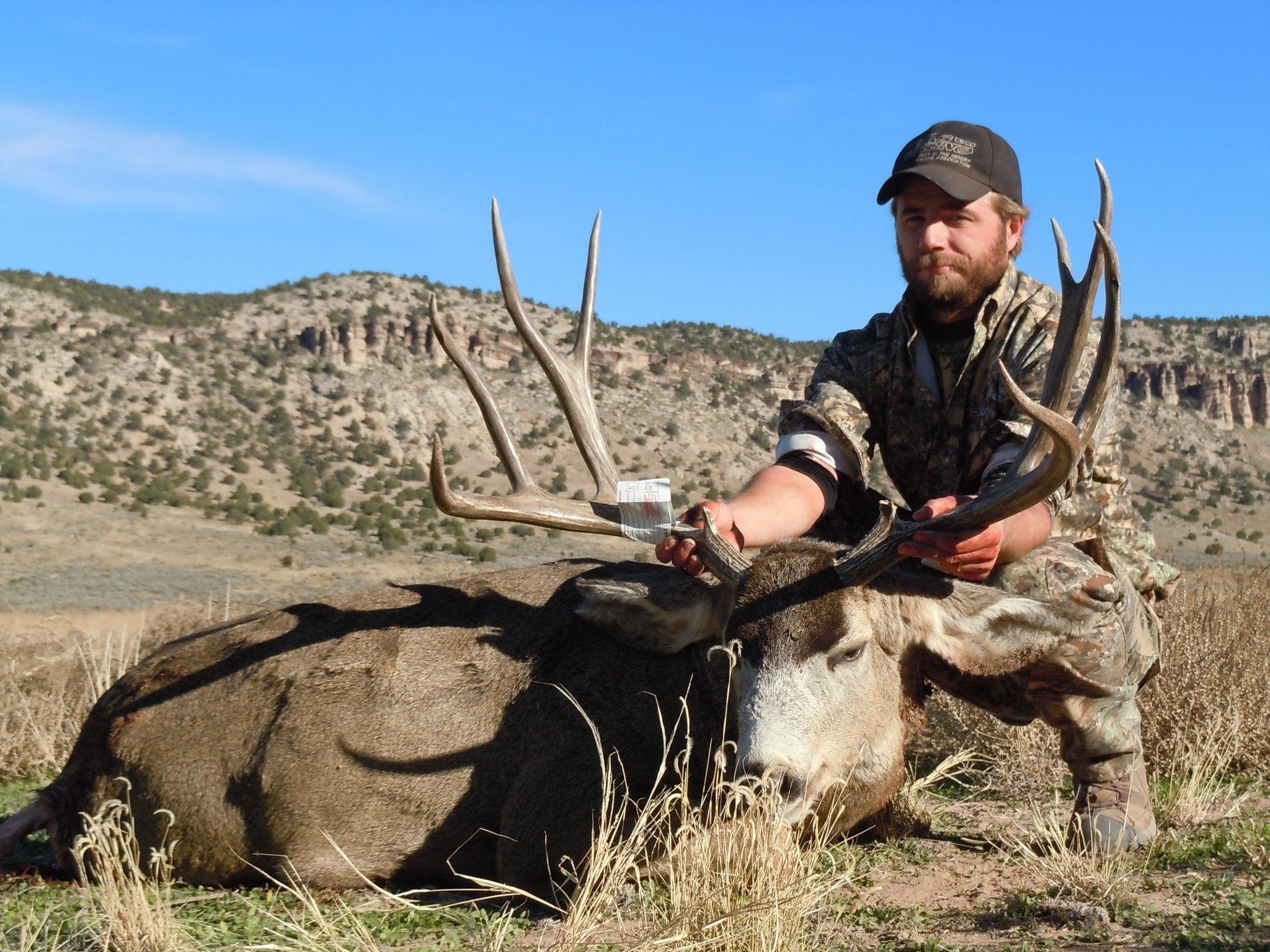 Mule Deer Shane Woodruff.jpg