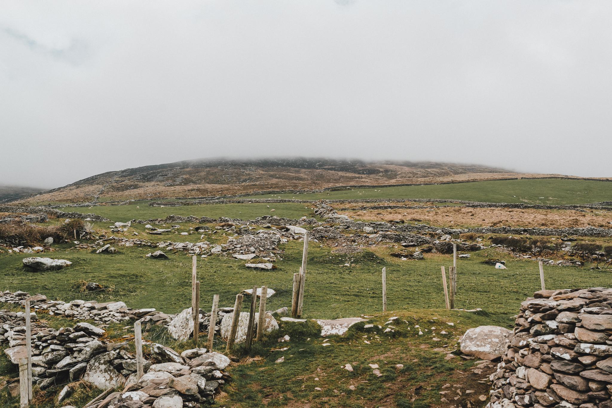 thekoebels-ireland-41.jpg