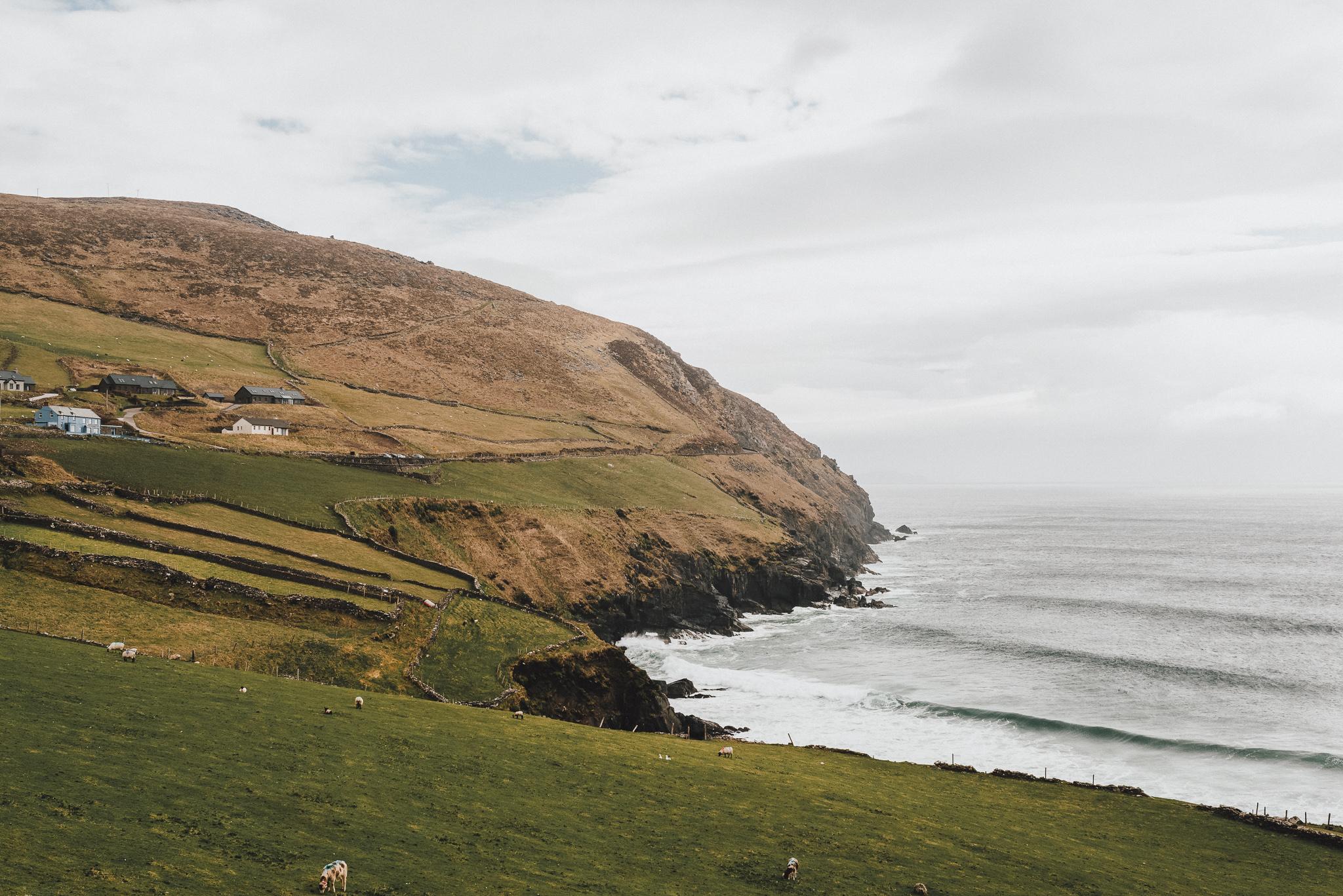 thekoebels-ireland-48.jpg
