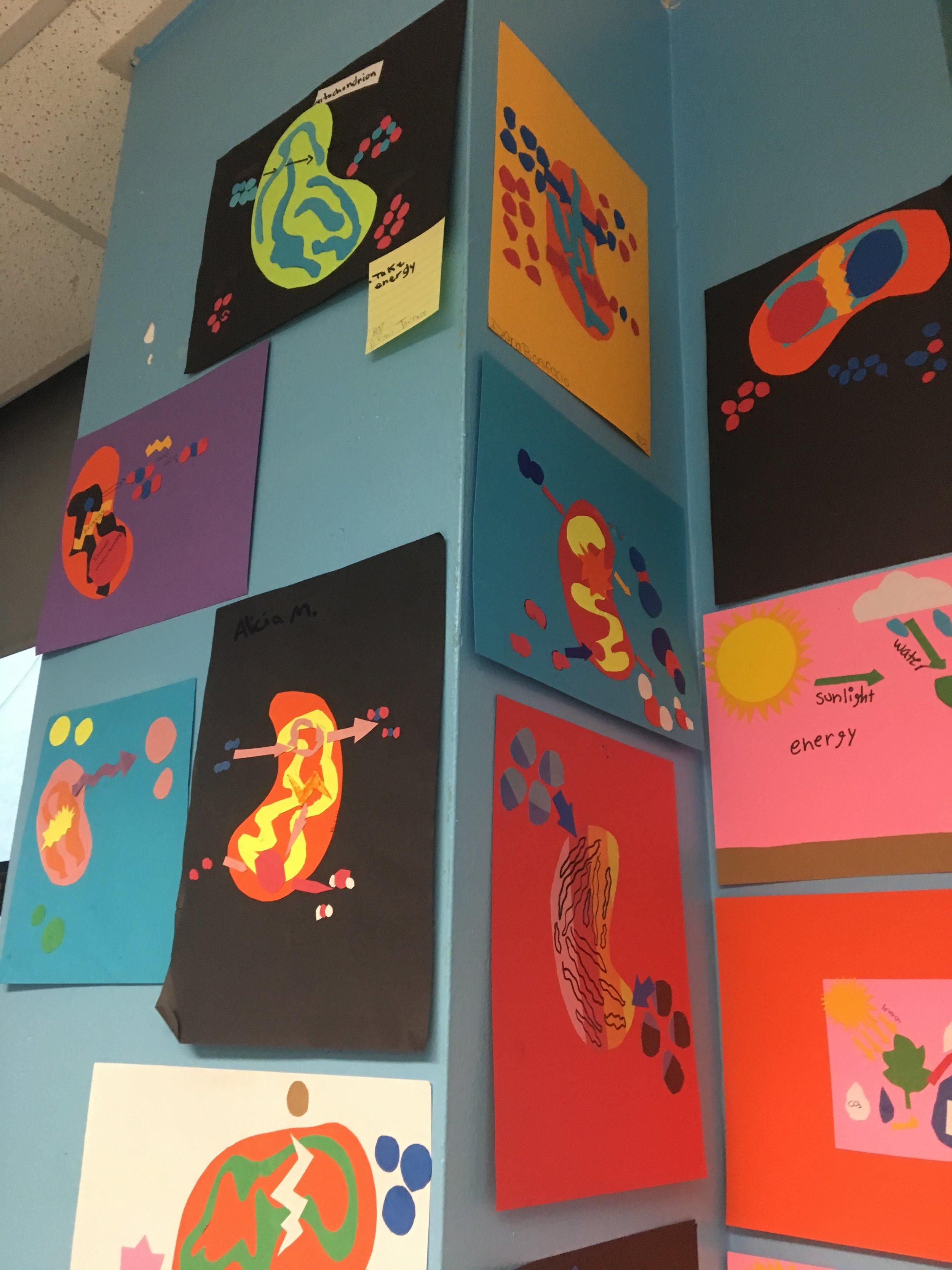Krebbs cycle Collage Art, STEAM class
