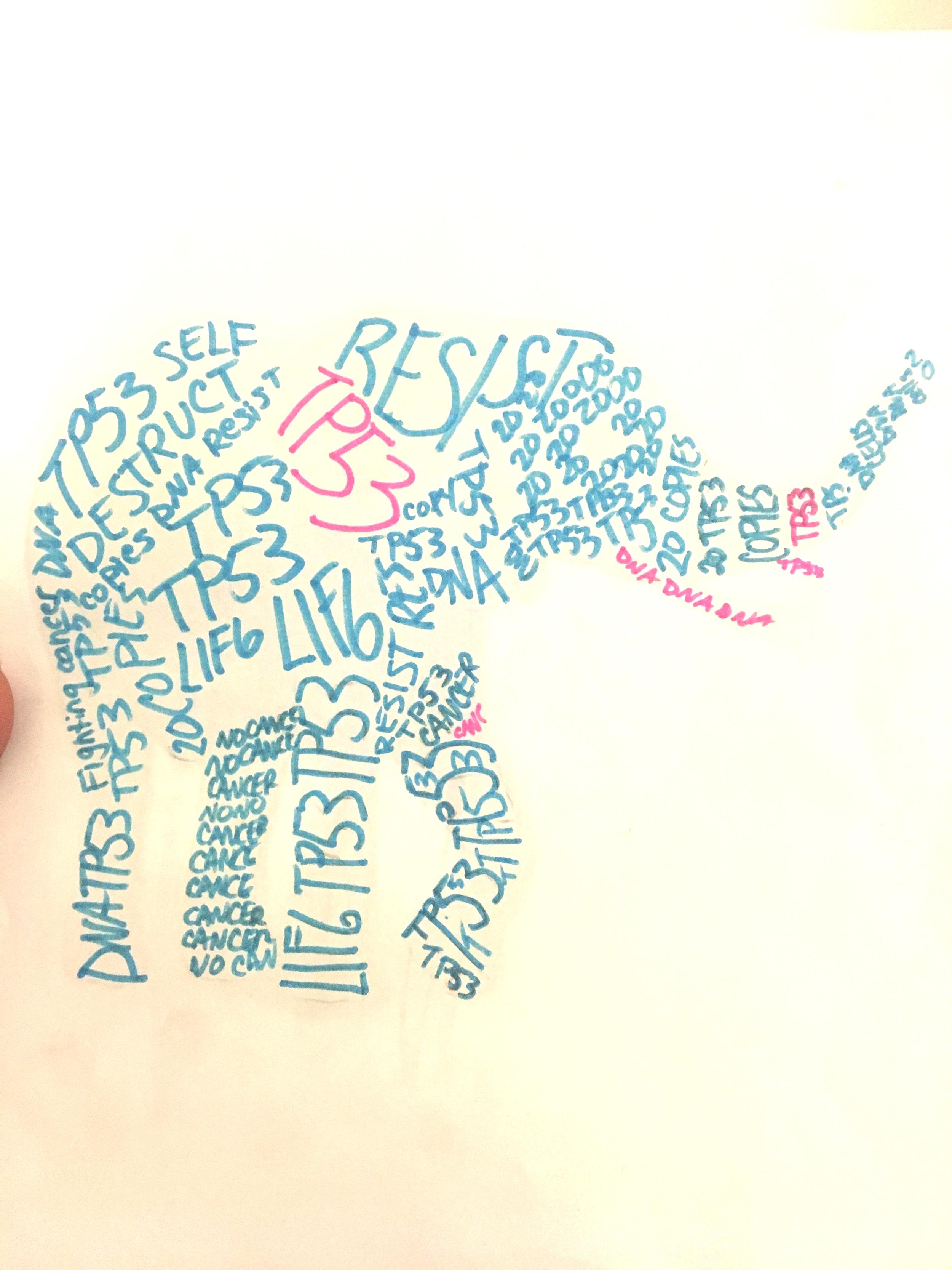 DNA Cancer TYPOGRAPHY art, STEAM class