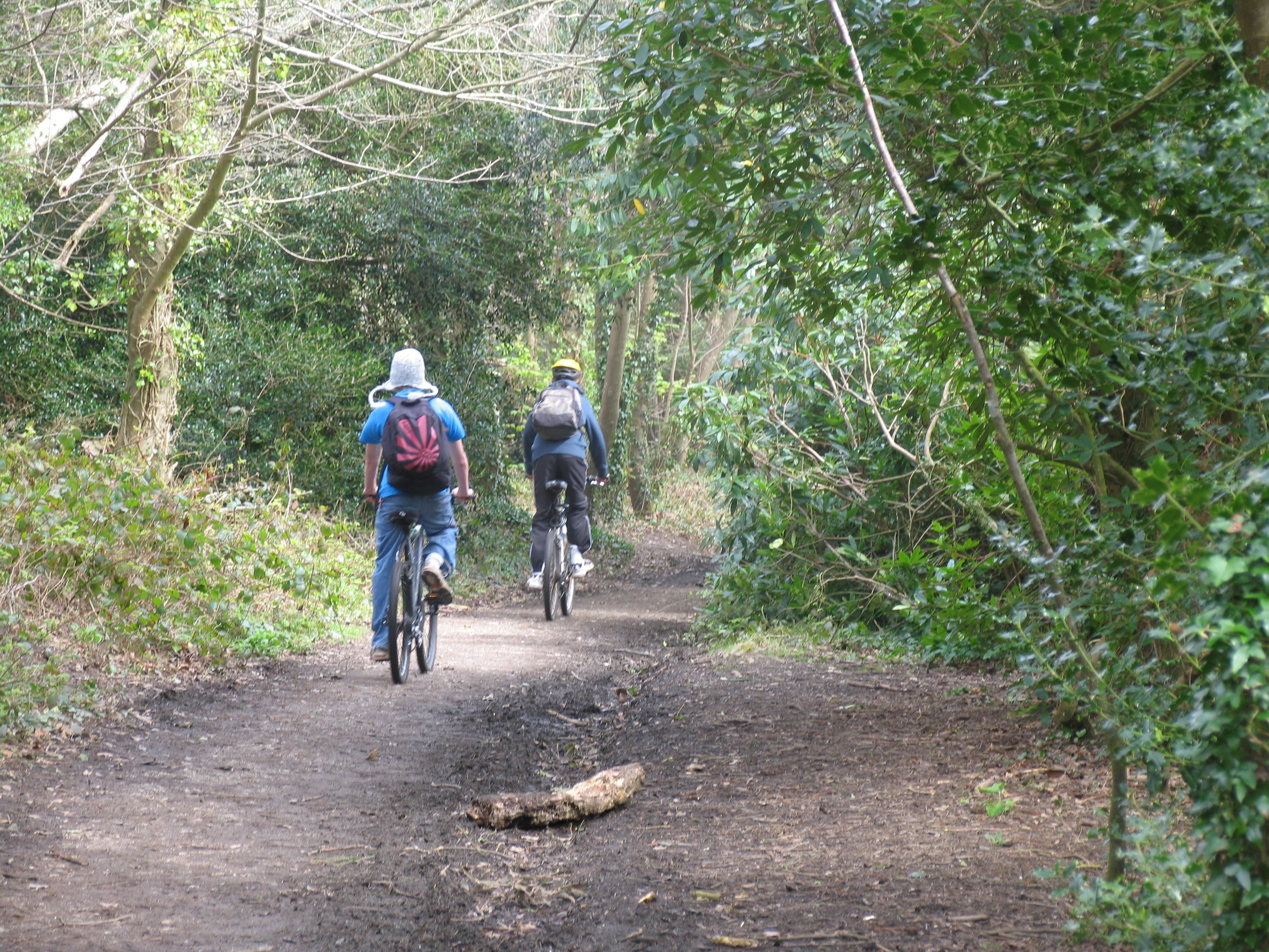 Cyclists in Tehidy Country Park