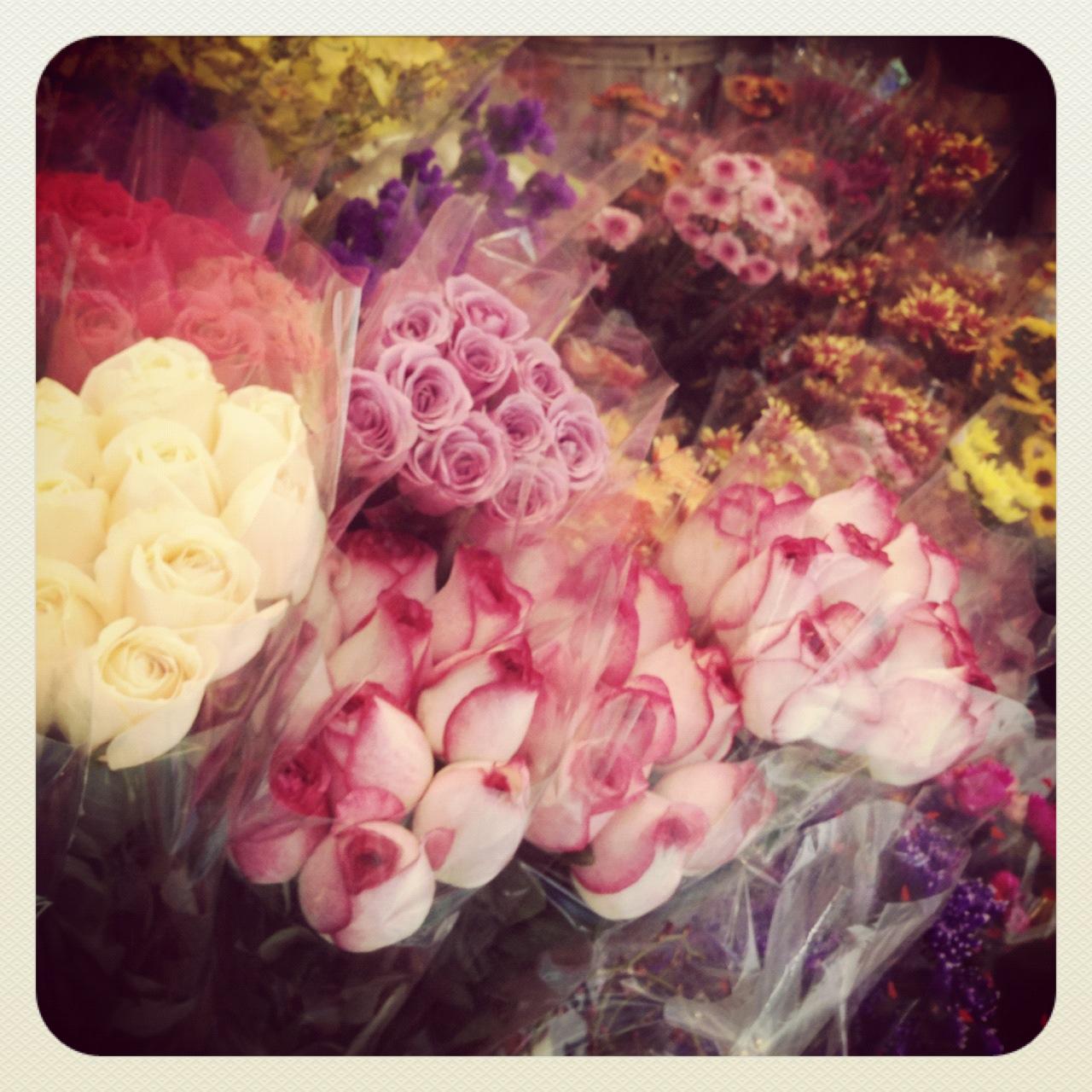 Insta-vic Flowers
