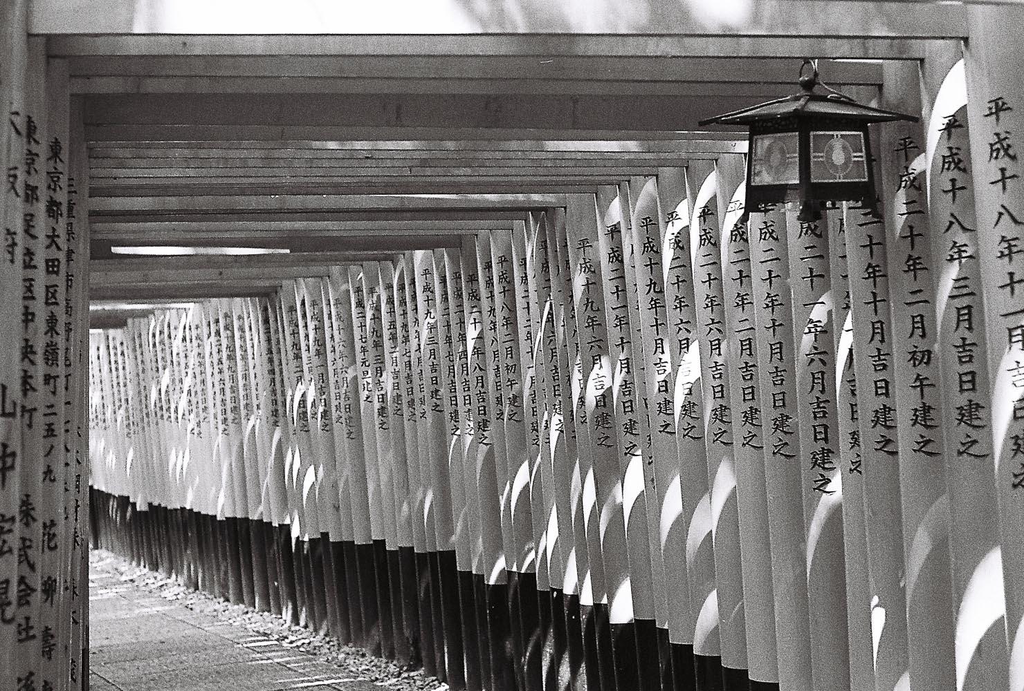 Kyoto Diary 1