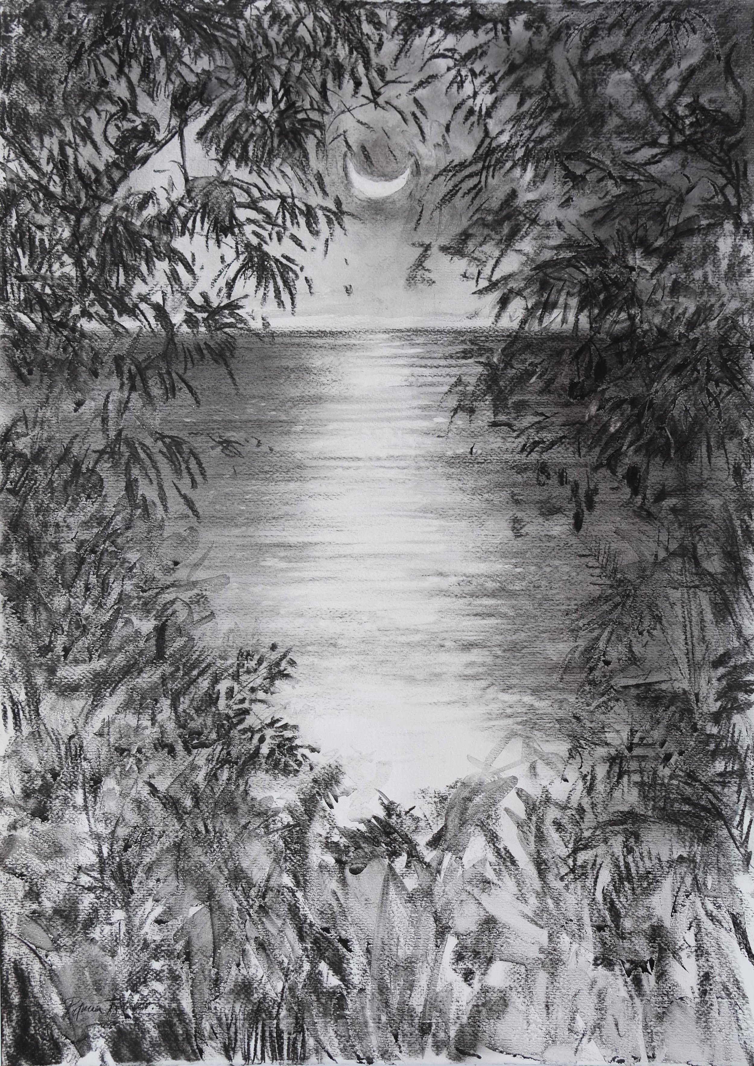 INDIAN OCEAN MOON  71 x 50cm Charcoal on Fabriano R 8 400
