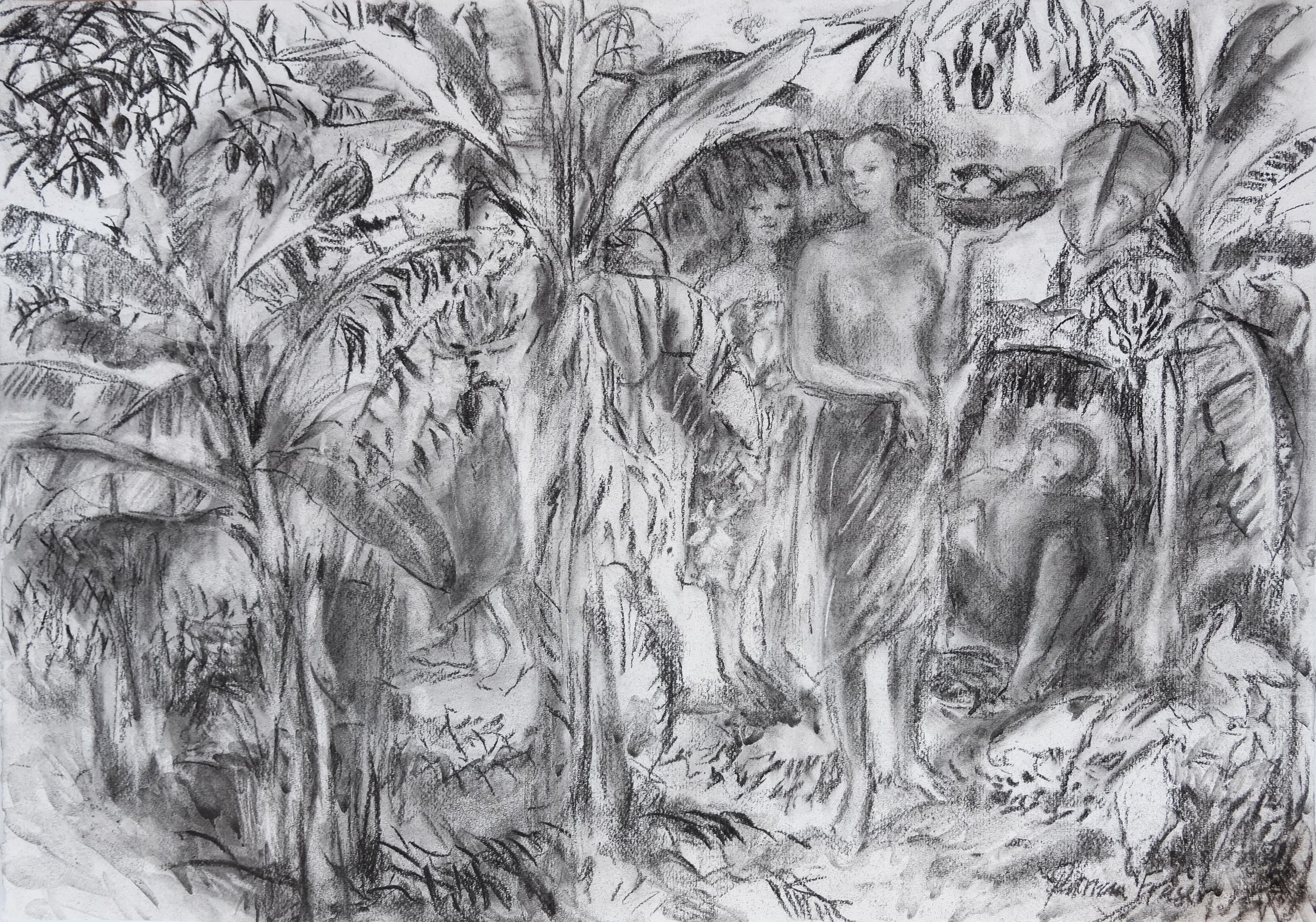THE GATHERING  50 x 71cm Charcoal on Fabriano R 8 800