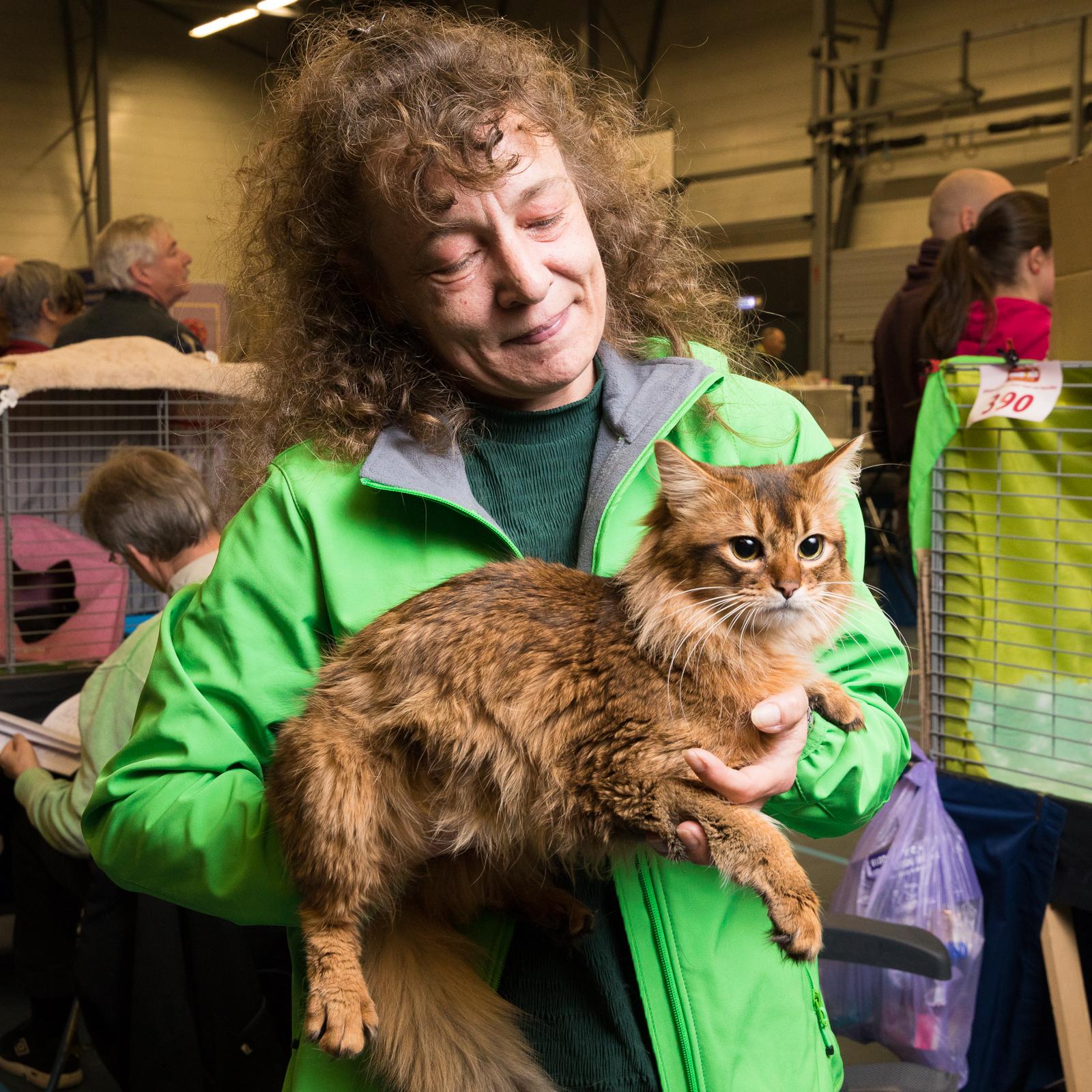 25-Kattenshow hilversum-8242.jpg
