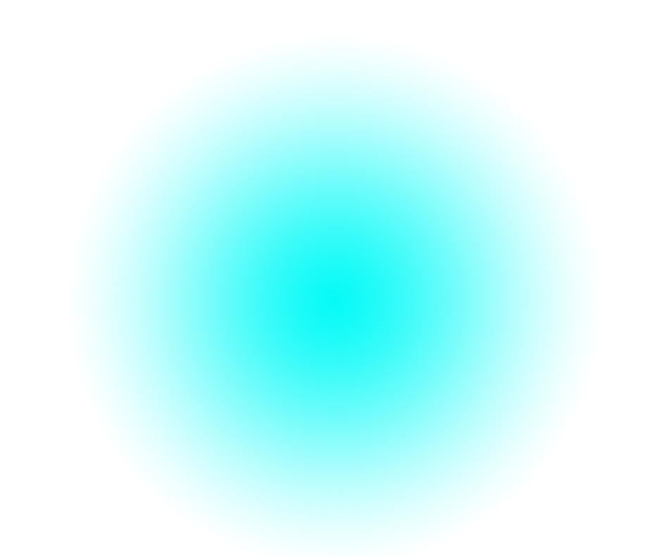 MG_8_50x60_2012.png