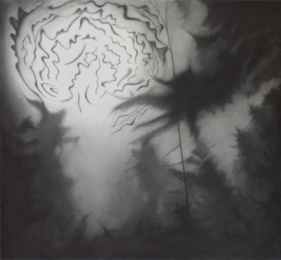 Phenomena, 2009, pencil on paper, 53x58cm.jpg