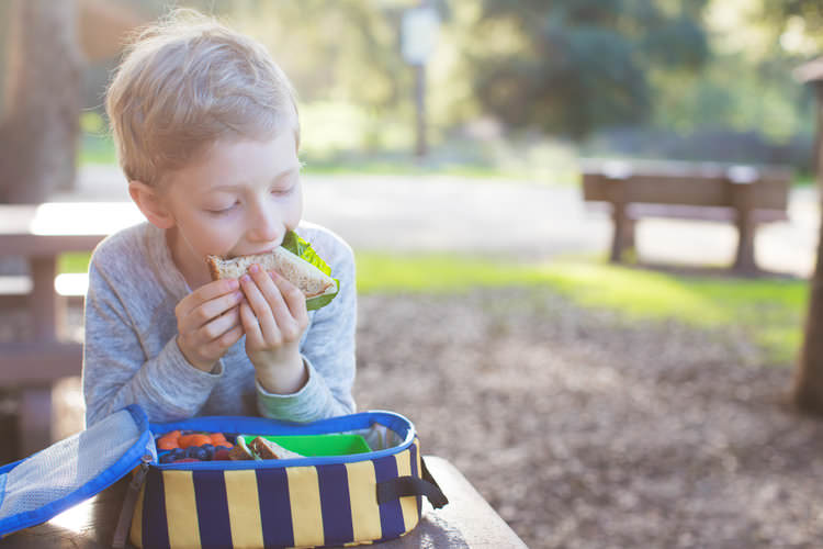 hungry child eating a sandwich boxed lunch.jpg