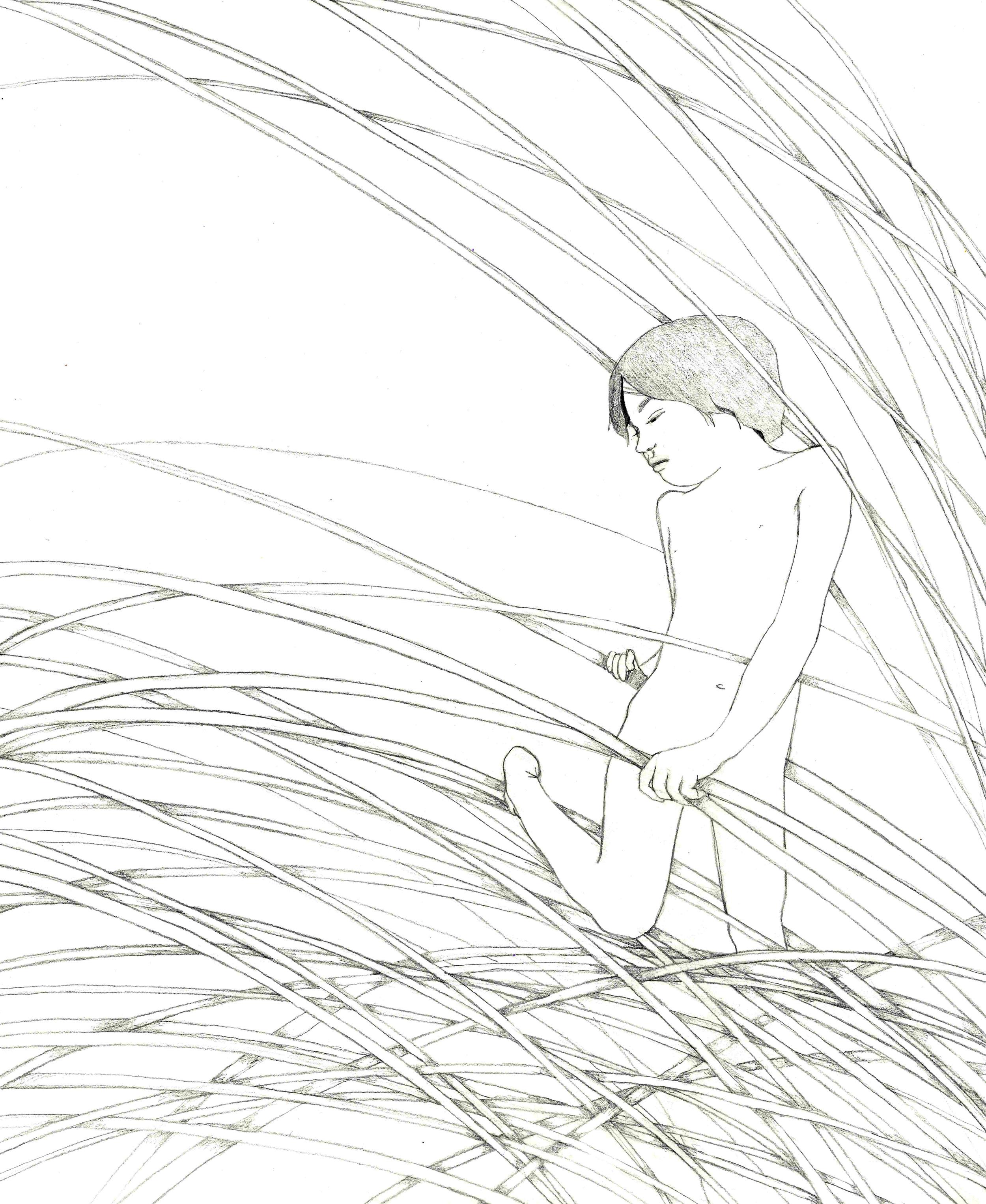 Amby in the Rye.jpg