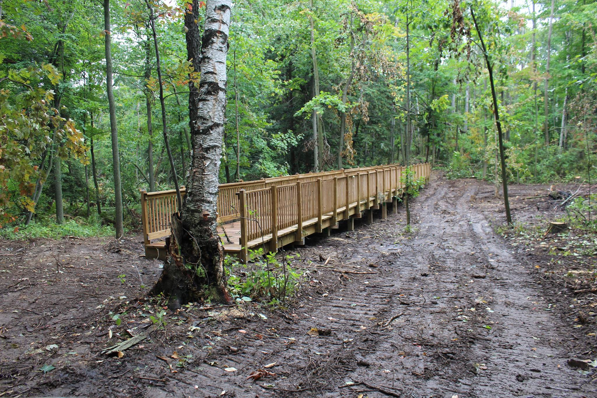 Backus Trail