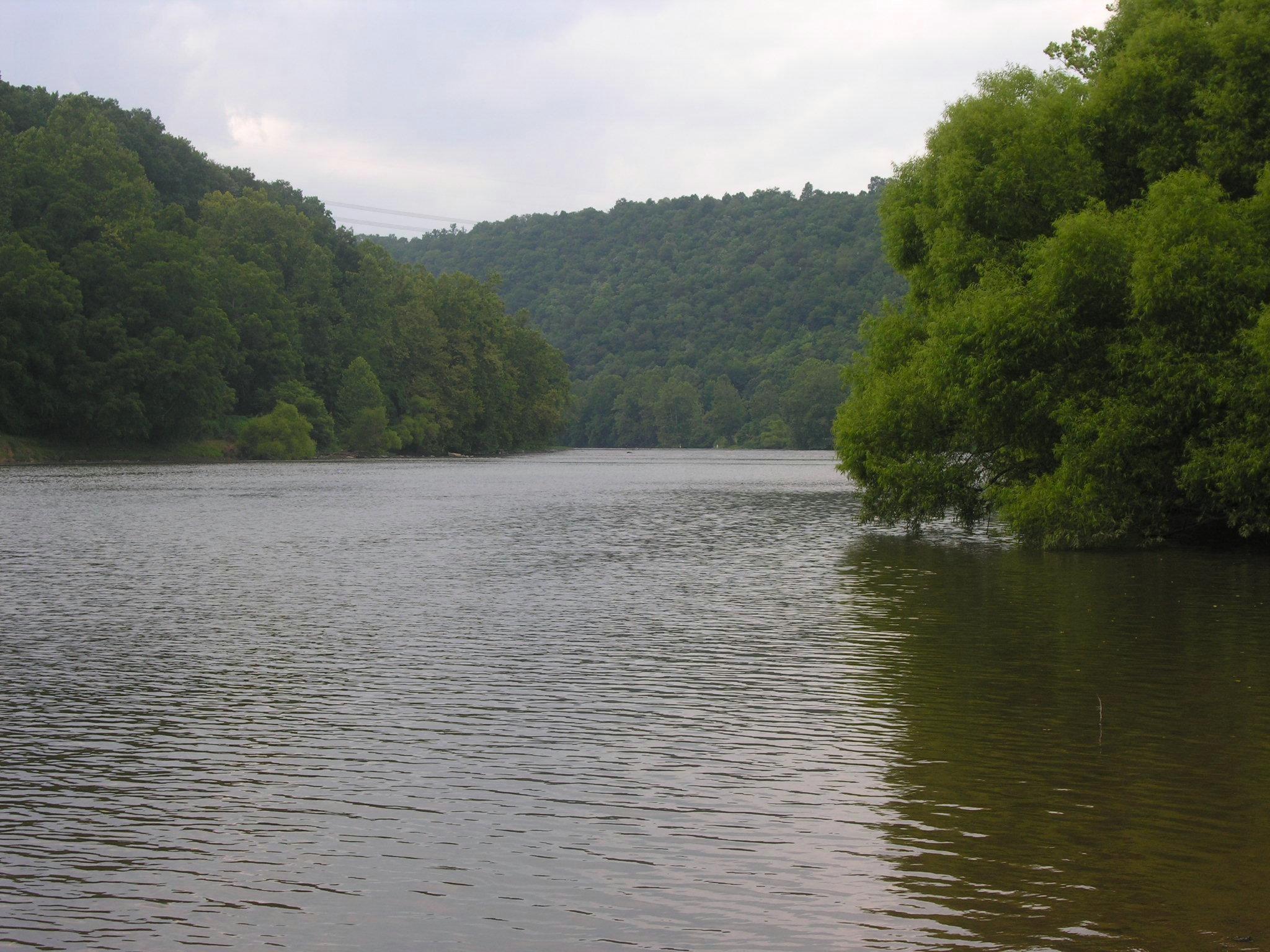 New River Photo-Upstream 2.jpg