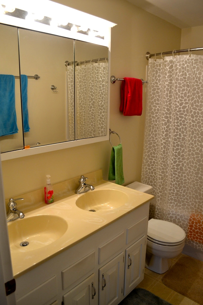 Upstairs Hall Bathroom-1.JPG