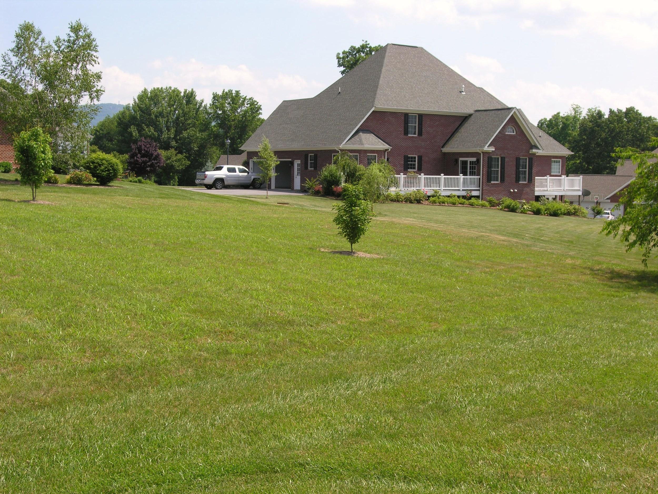 Back Yard-View 4.JPG