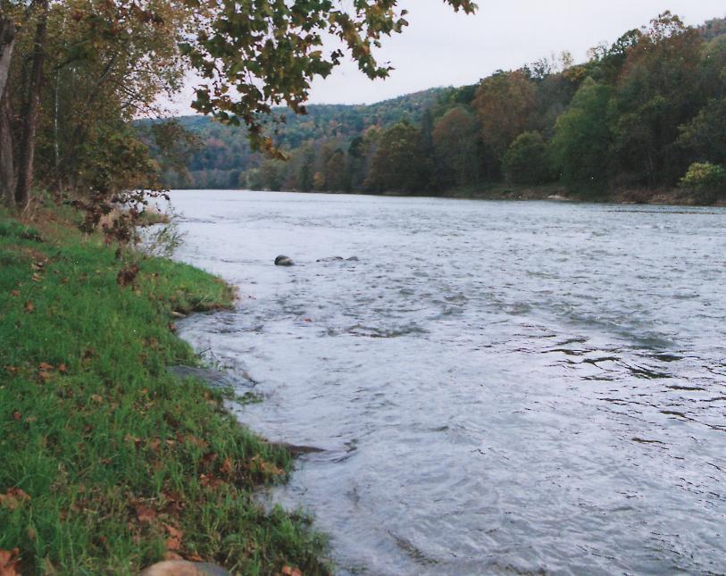 My river bank (2).jpg