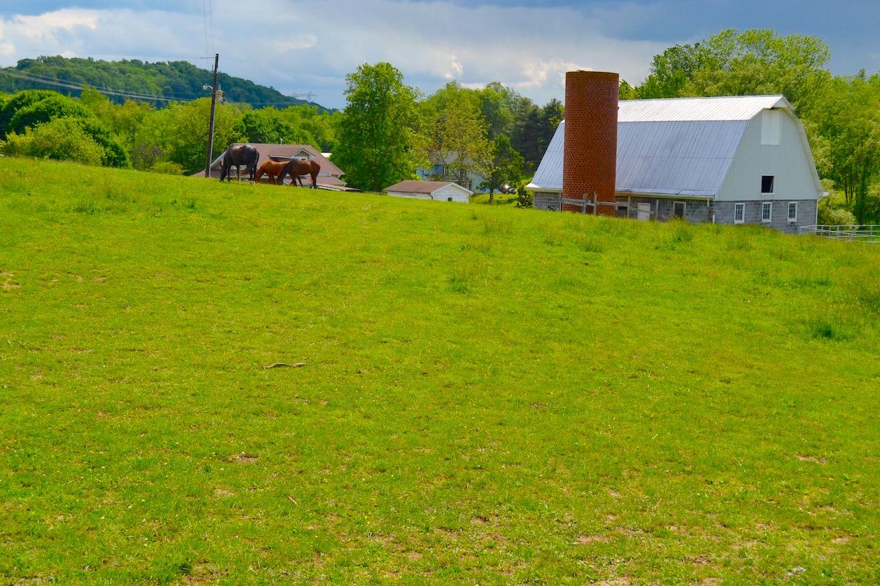 Land-Pasture 1-1.jpg