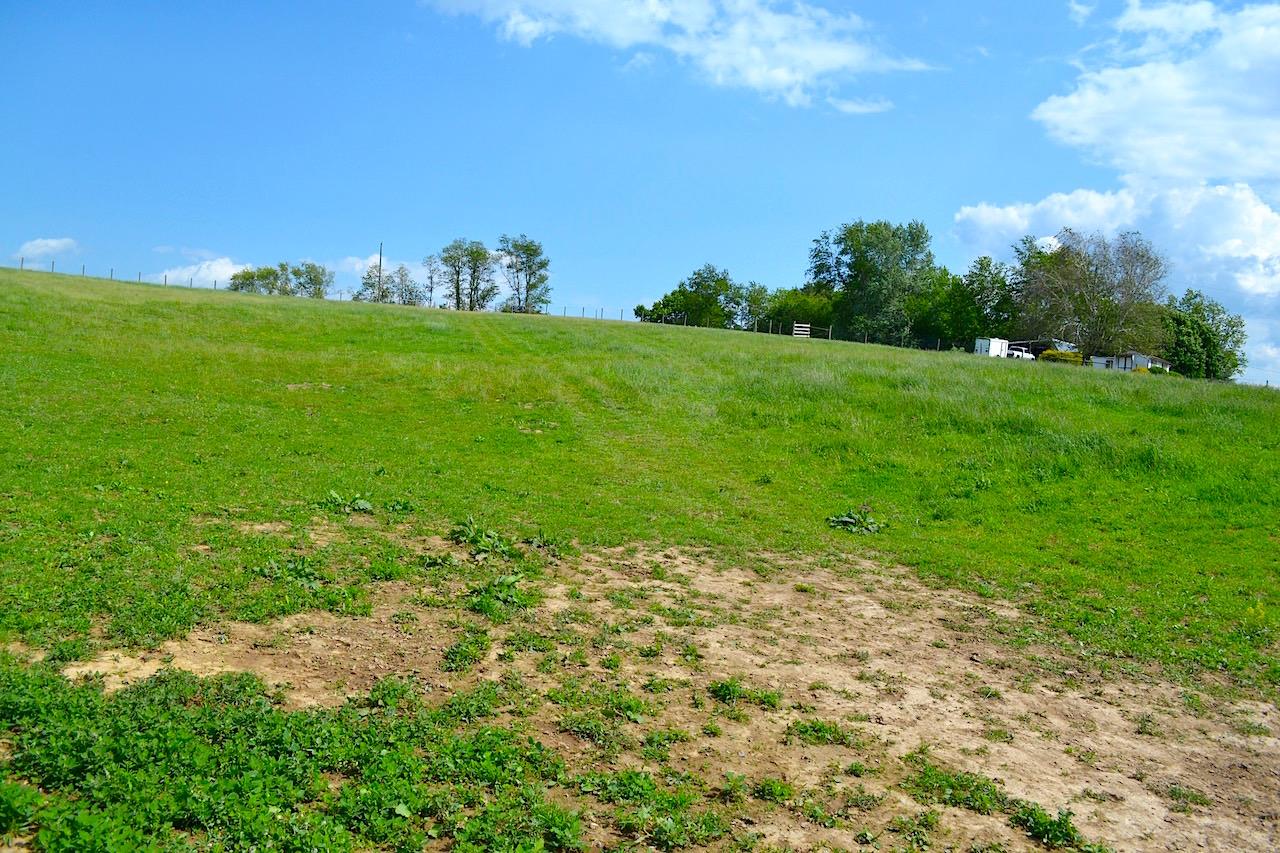 Land-Pasture 2-2.jpg