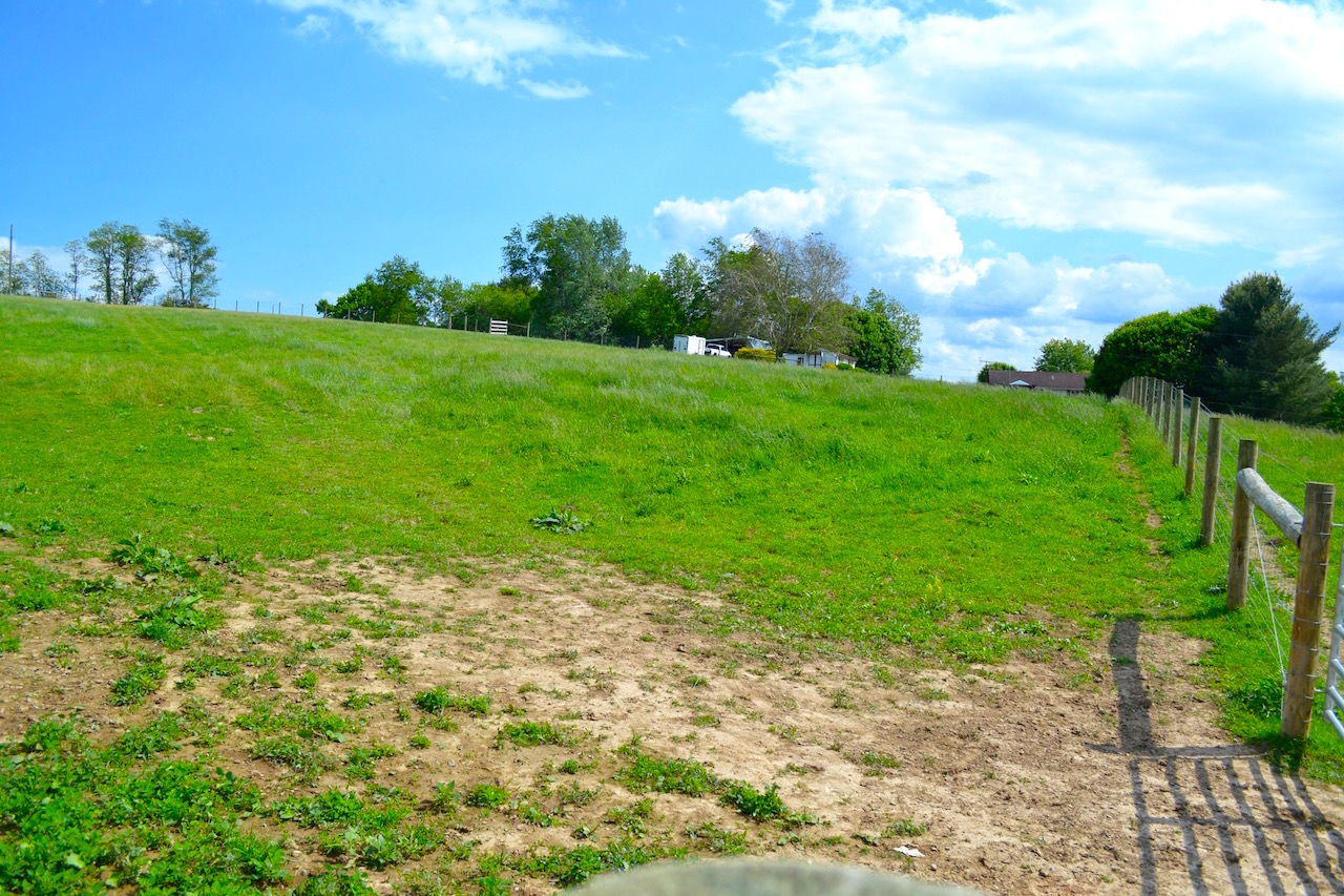Land-Pasture 2-1.jpg