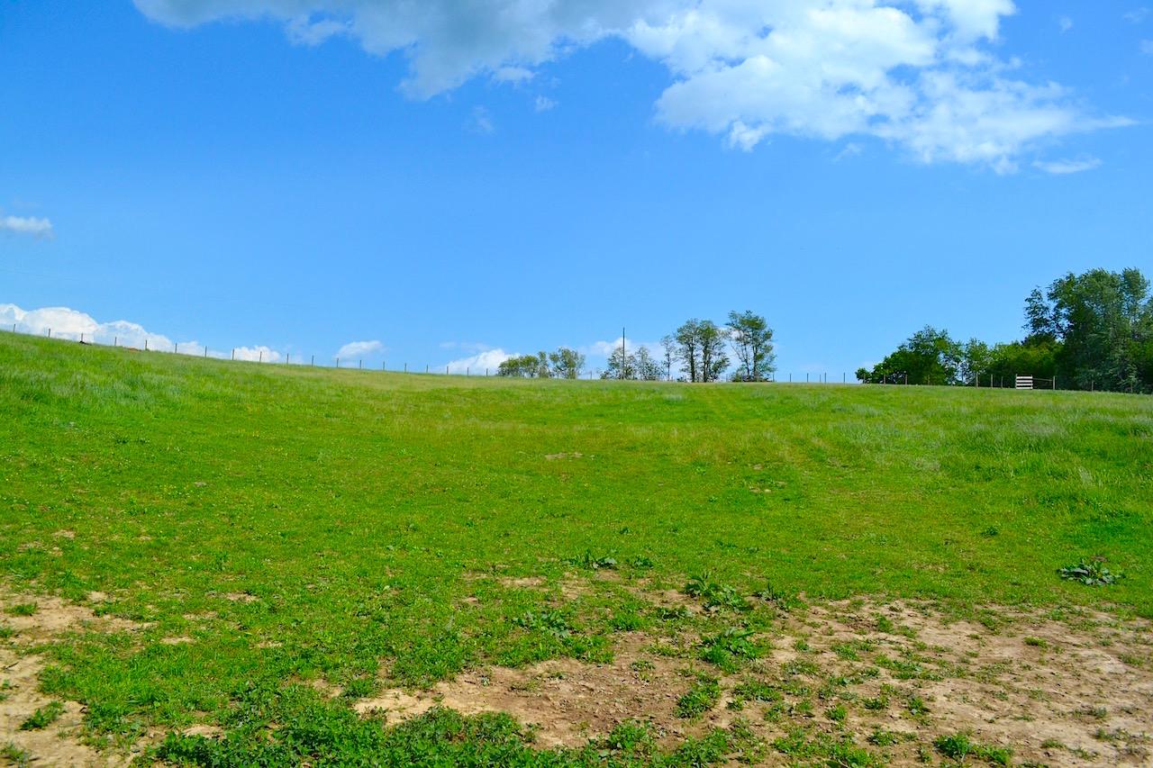 Land-Pasture 2-3.jpg