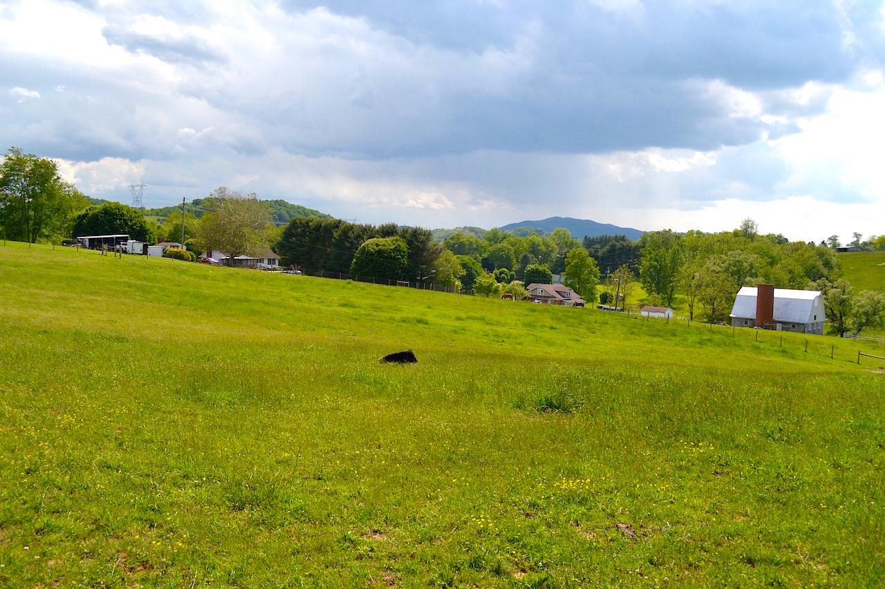 Land-Pasture 2-4.jpg