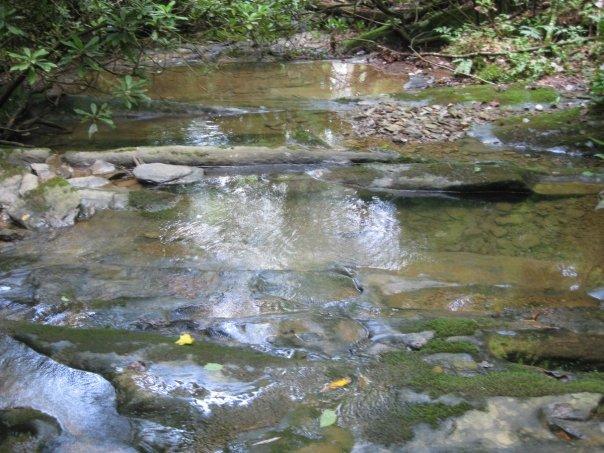 23-Creek 1.jpg