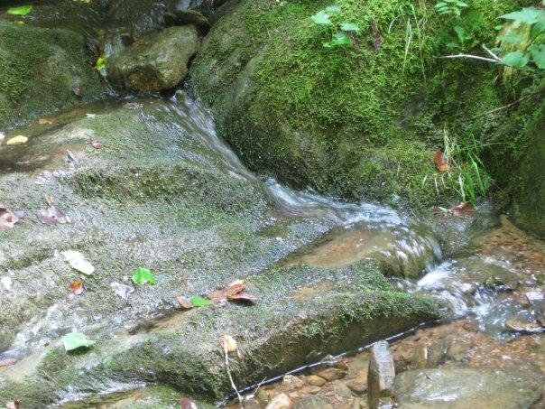 24-Creek 2.jpg