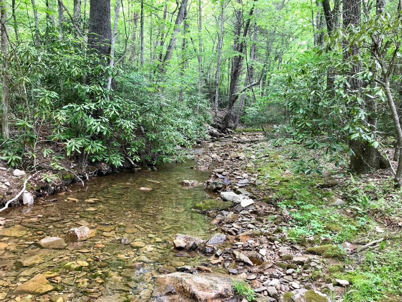 Rock Creek-1.jpg
