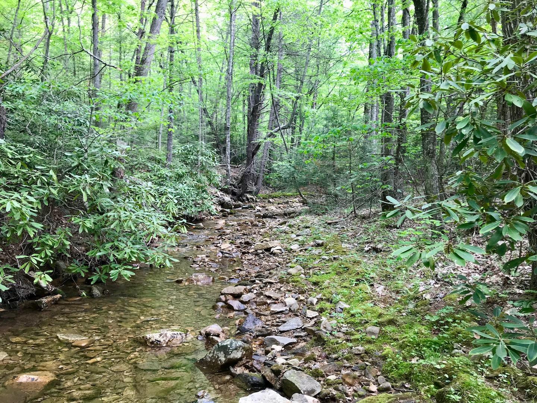 Rock Creek-2.jpg