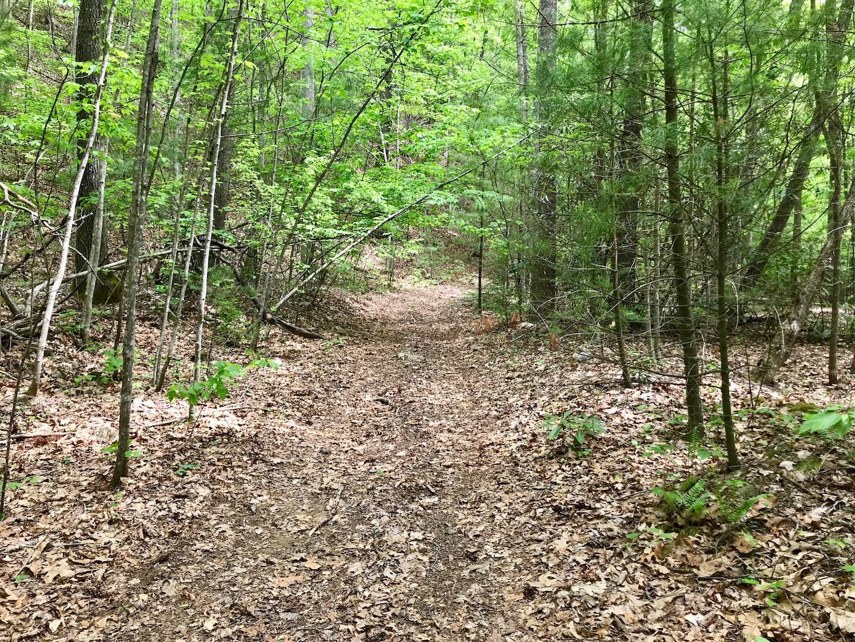 Trail on Property-2.jpg