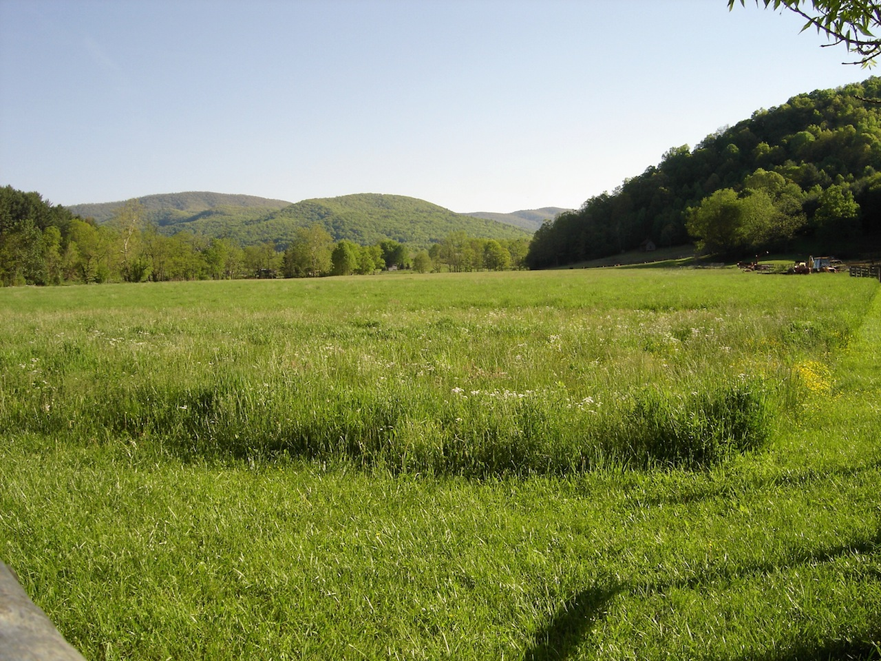 Farm-1.JPG