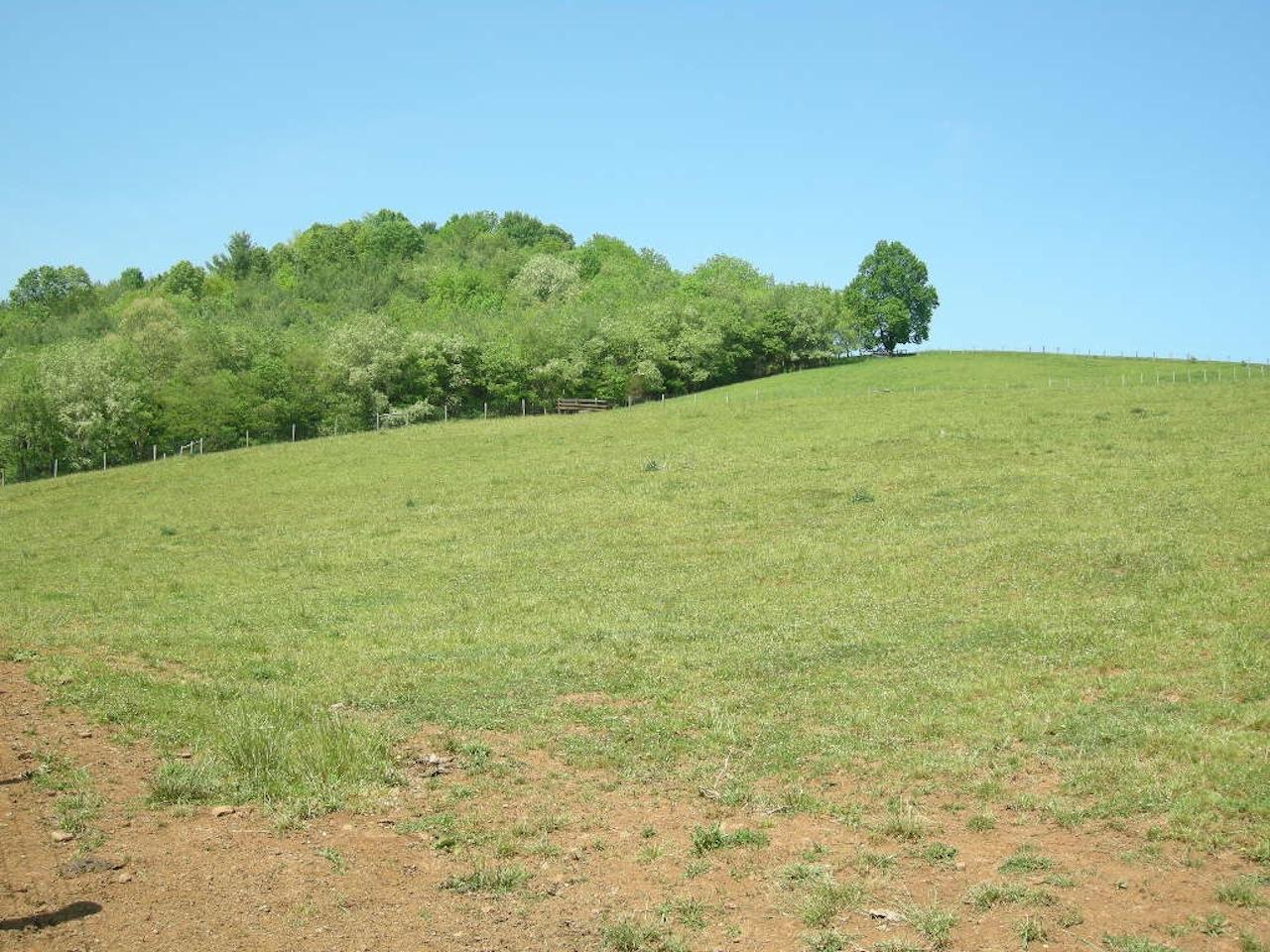 Farm-8.JPG