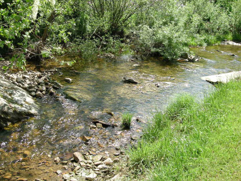Creek-4.JPG