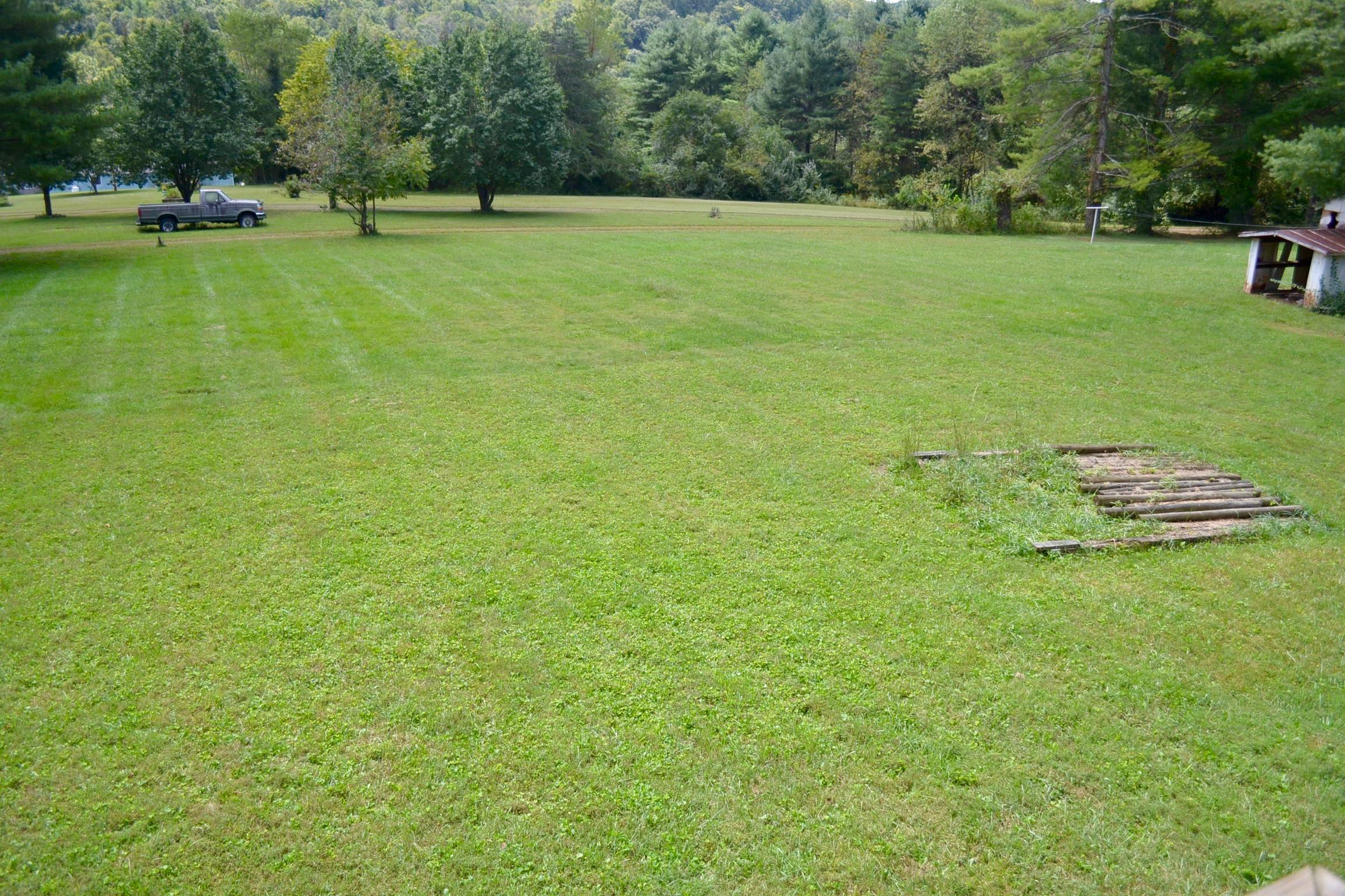 Back Yard-10.jpg