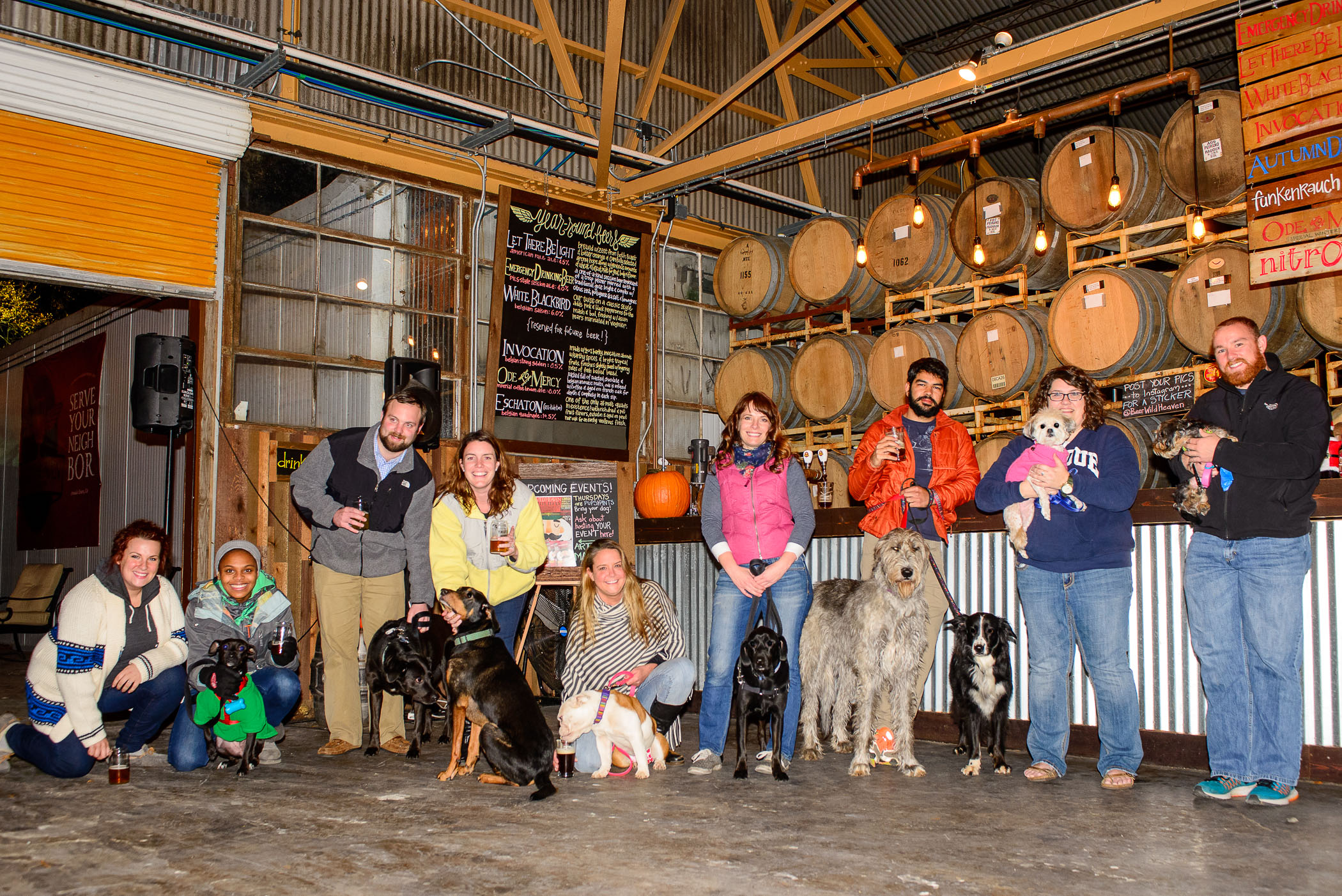 Dogs and humans enjoying the craft beer scene!