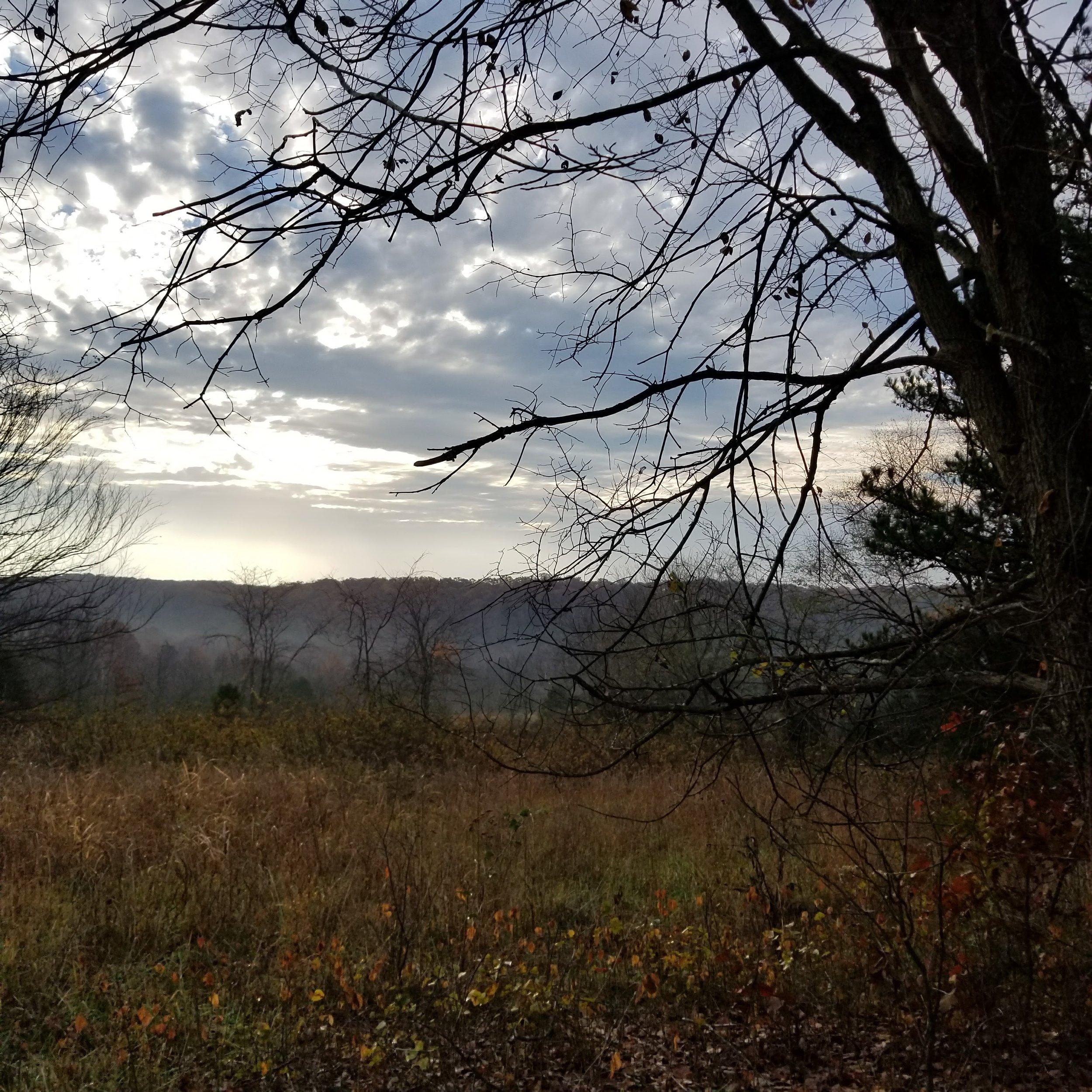 Morning hike from Bar K Camp (Mark Twain National Park)