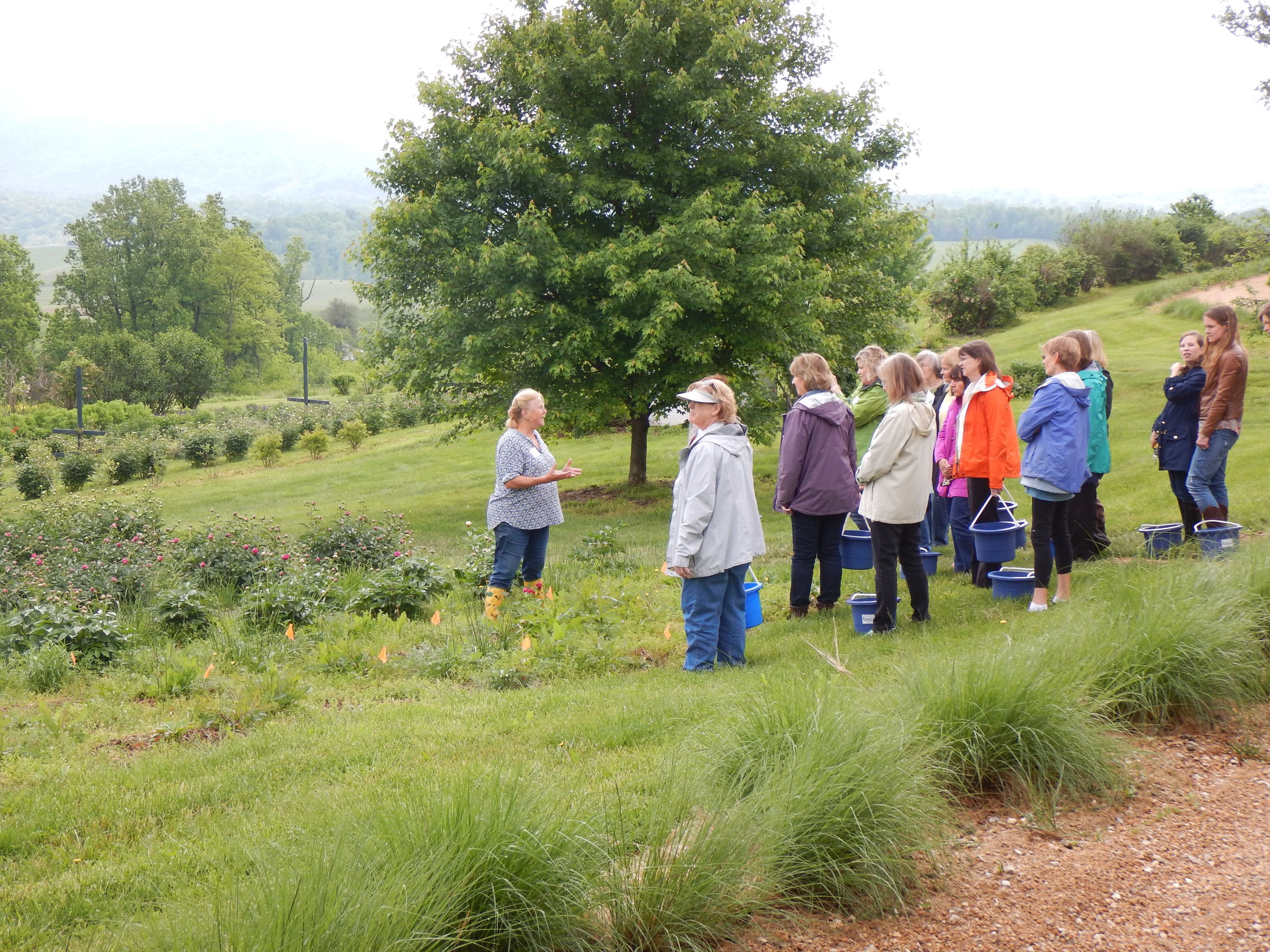 Turning Peony class loose in the field.