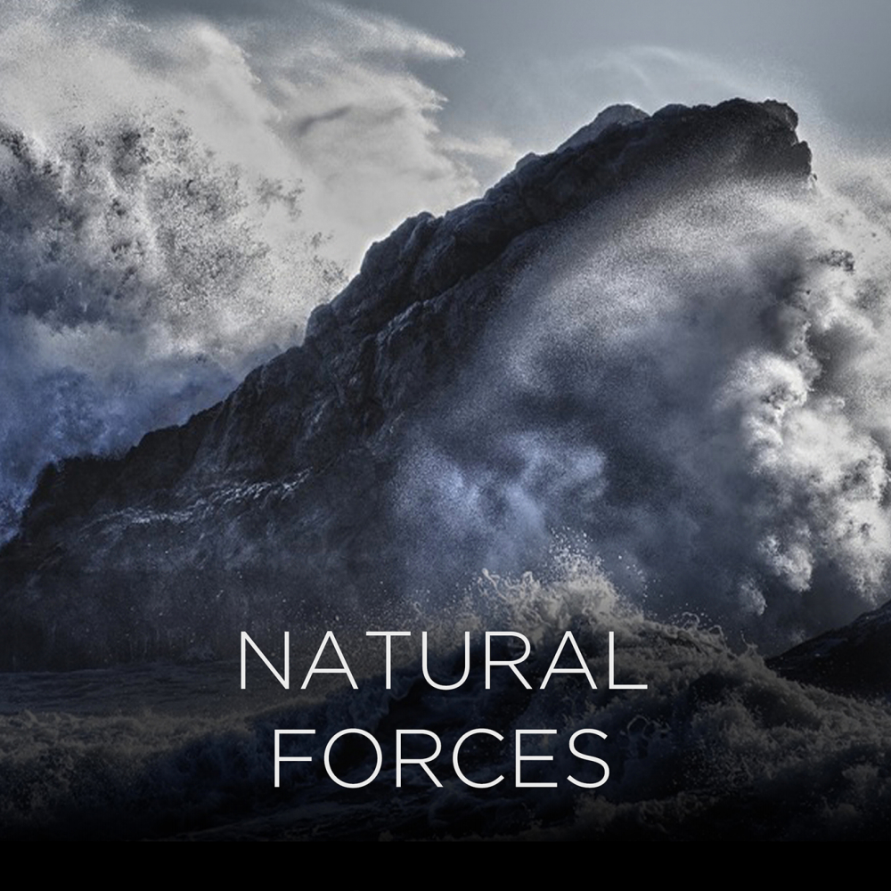 Gravity 1.1 - Natural Forces_2.jpg