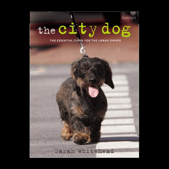 The City Dog (Paperback) - £13.99