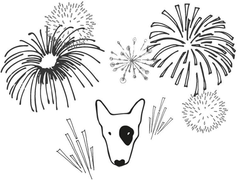 Fireworks programme.jpg